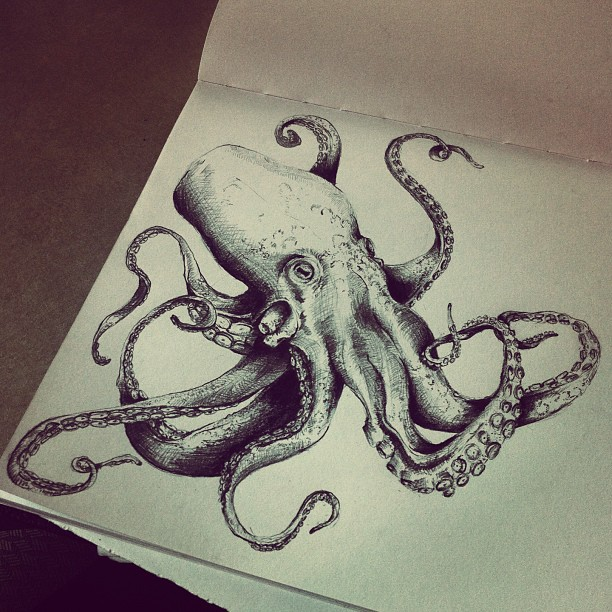 Octopus Drawing Tumblr